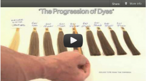Volume #1 – The Progression of Dyes
