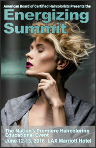 2016 ENERGIZING SUMMIT in Los Angeles
